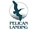 Pelican Landing Real Estate Naples Florida