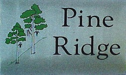Pine Ridge Real Estate and Pine Ridge Homes for Sale